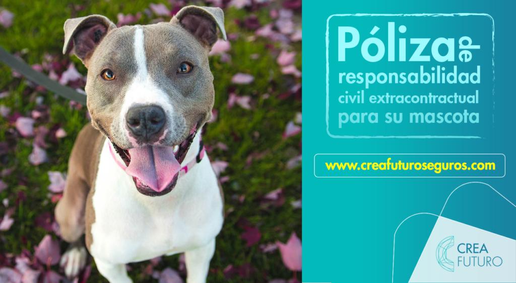 Tenencia de perros peligrosos, nueva regulación